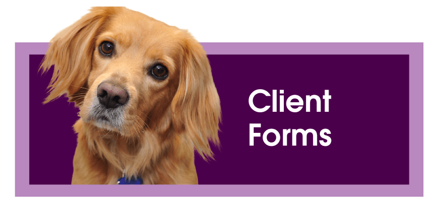 Montrose Animal Hospital & Pet Hotel