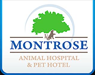 Montrose Animal Hospital and Pet Hotel Marietta GA