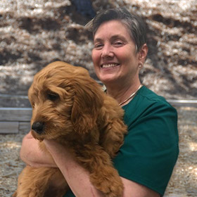 Robin Montrose Animal Hospital & Pet Hotel