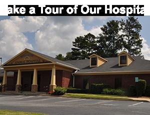 Montrose Animal Hospital Video Tour