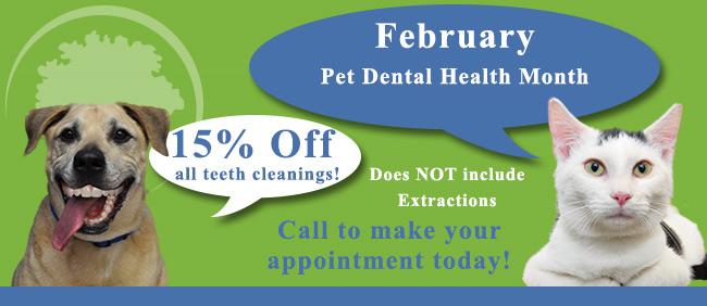 Montrose Animal Hospital Dental Health Month Promotion